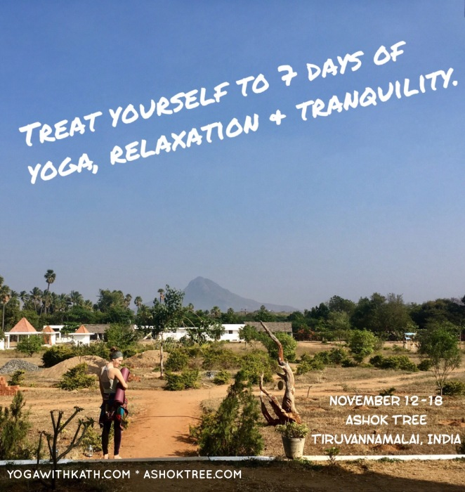 yoga retreat ashok tree early bird pricing meditation india november pky